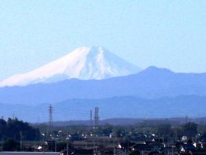 Fuji_yama